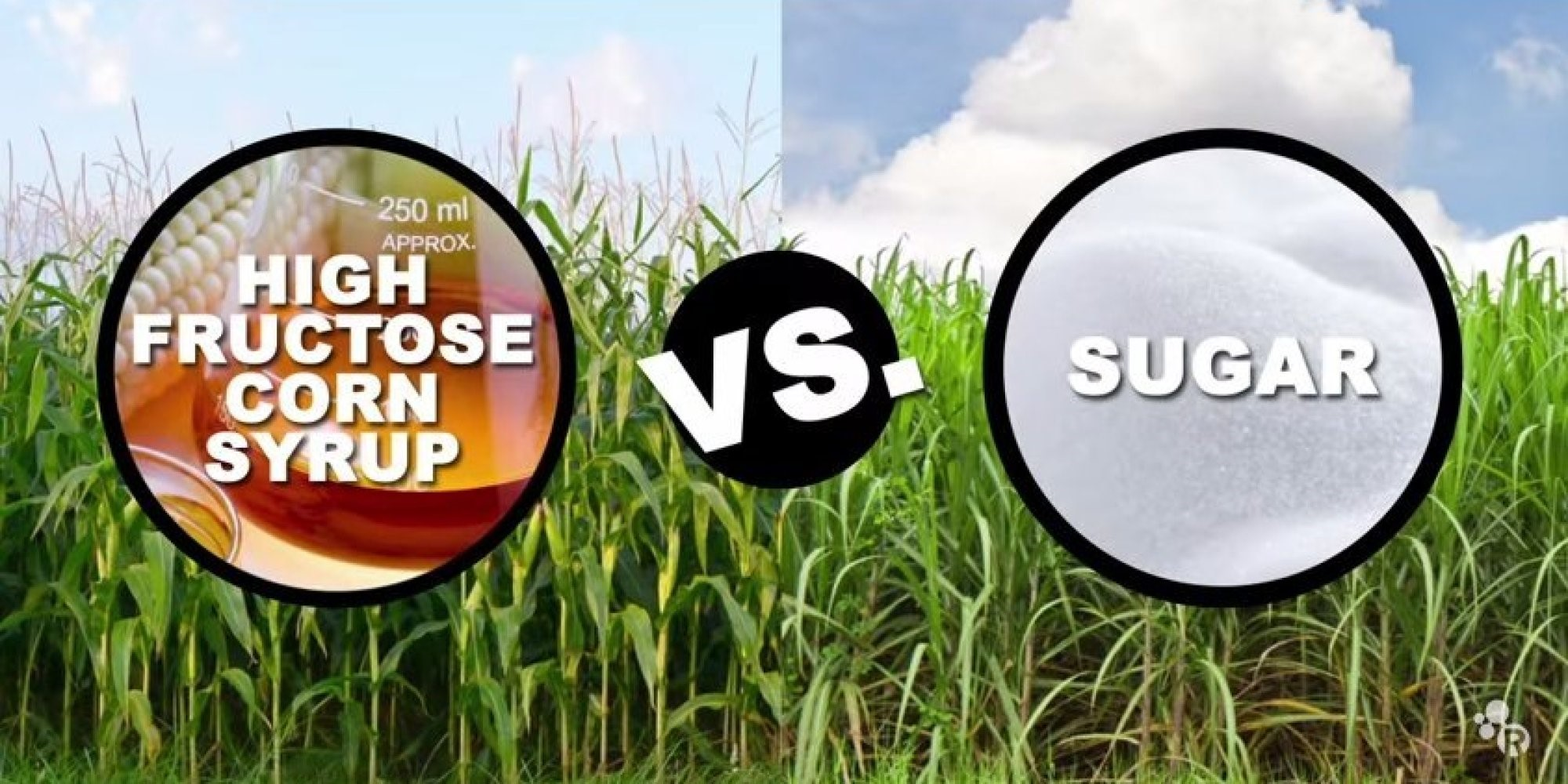 High Fructose Corn Syrup versus Sugar. Is one better or worse than the other? Here at Tognazzini, we're going to discuss the pros and cons of both as it relates to the food service industry.